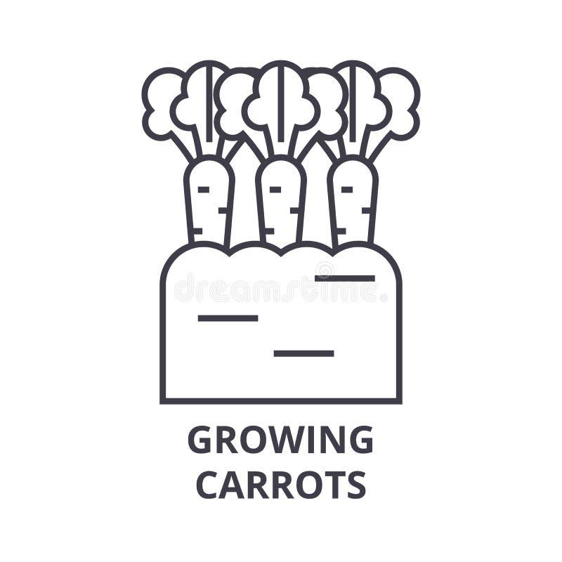 Wachsende Karotten zeichnen Ikone, Entwurfszeichen, lineares Symbol, Vektor, flache Illustration stock abbildung