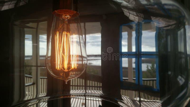 Wacky bulb stock photo