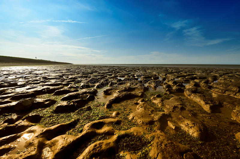 Wadden Sea in Moddergat, the Netherlands royalty free stock photos