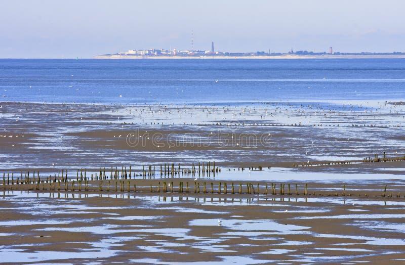 Waddenzee (ebbtide) perto de Noordkaap, Groningen, Holanda fotos de stock