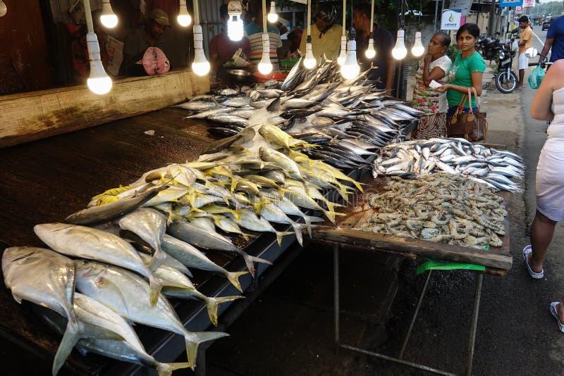 Wadduwa, Sri Lanka - 5 de maio de 2018: Os peixes frescos e os camarões para a venda no contador nos peixes compram imagens de stock