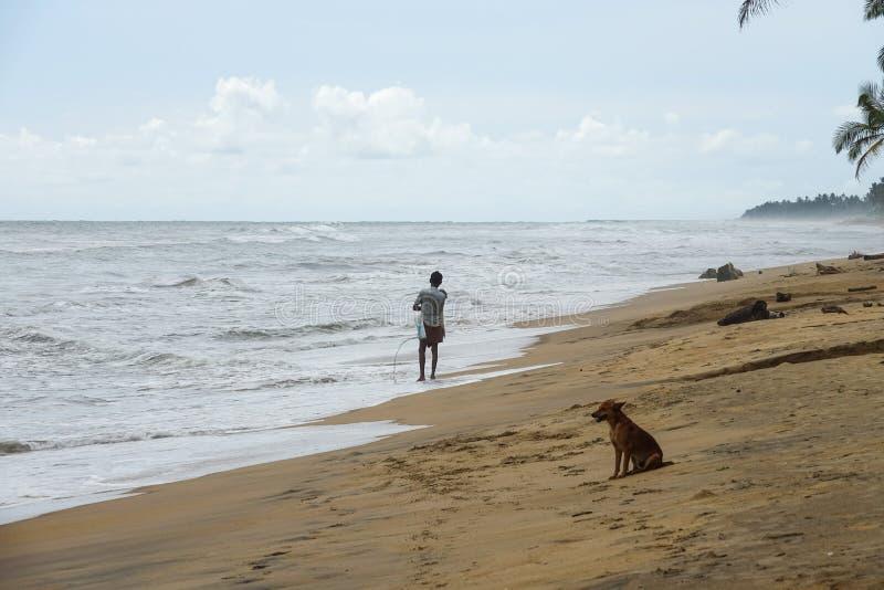 Wadduwa, Sri Lanka - 8 de maio de 2018: Pescador com rede de pesca e cão na praia em Sri Lanka fotos de stock