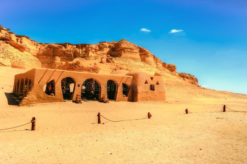 Wadi Al Hitan stockbild