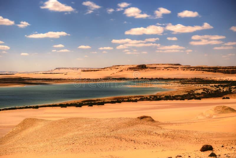 Wadi Al Hitan lizenzfreie stockfotografie