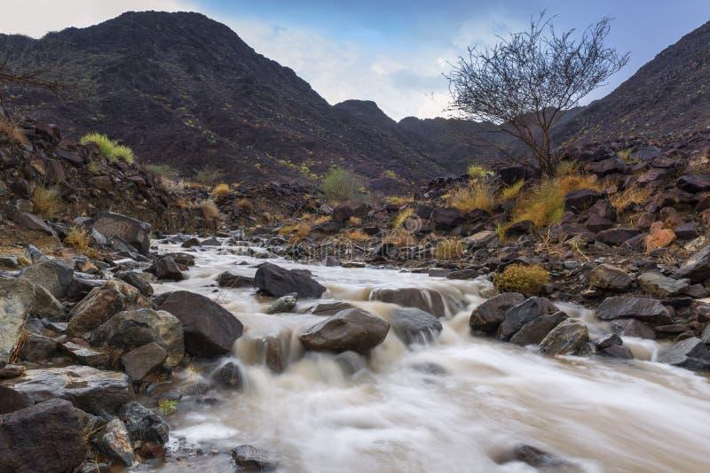 Wadi Al Shawkha, Ras Al Khaimah images stock
