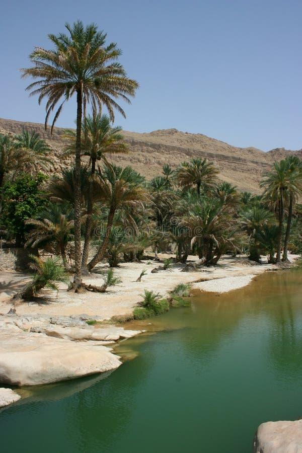 Download Wadi Bani Khalid stock image. Image of relaxation, wadi - 14764647