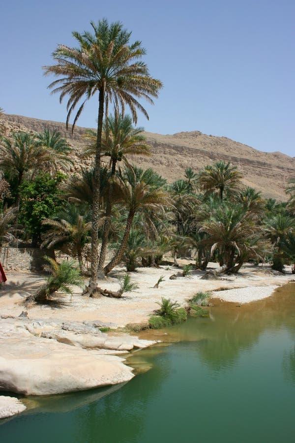 Wadi Bani Khalid immagini stock
