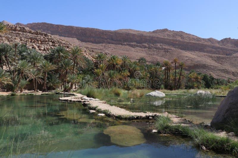 Wadi Bani Khalid, Oman fotografie stock