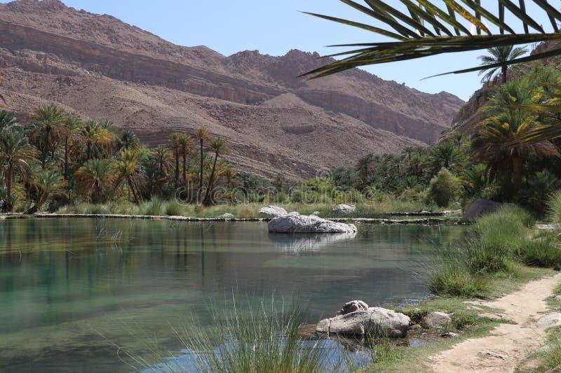 Wadi Bani Khalid, Oman fotografia stock libera da diritti