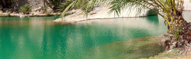 Wadi Bani Khalid - omansk öken - sultanat av Oman arkivfoton