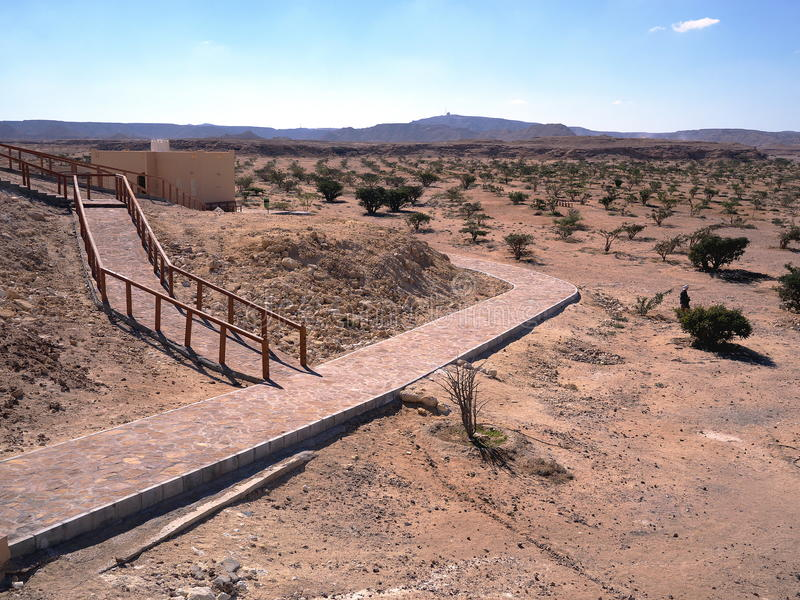 Wadi Dawkah, región de Dhofar, sultanato de Omán fotos de archivo
