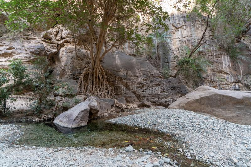 Wadi Lajab dans la province de Jizan, Arabie Saoudite photos stock