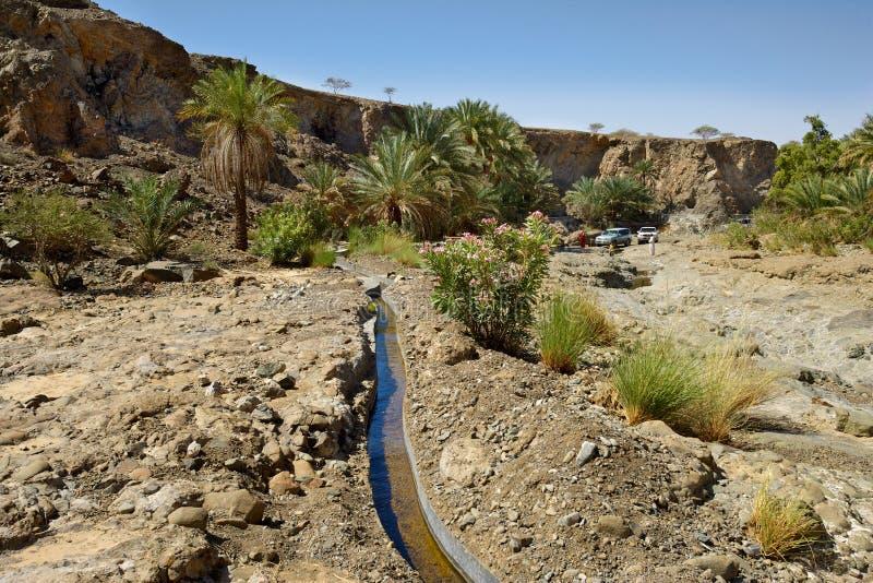 Wadi Madbah i Oman royaltyfri foto