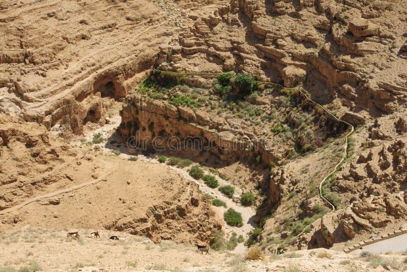Wadi Qelt fotografia de stock