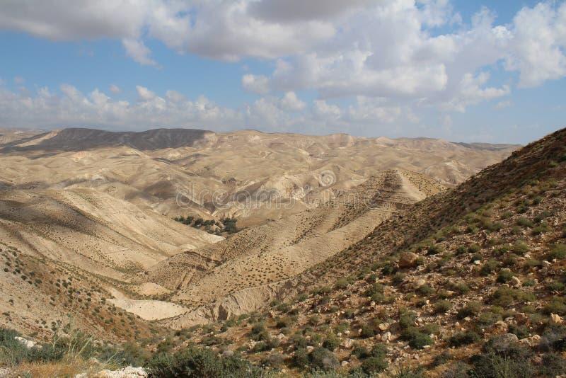 Wadi Qelt en el desierto de Judean cerca de Jericó, de la naturaleza, de la piedra, de la roca y del oasis Lugares no vistos, des imagenes de archivo