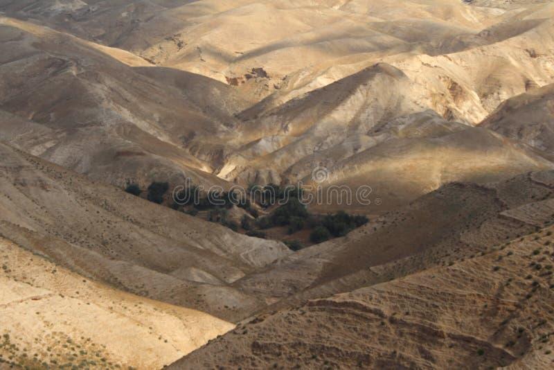 Wadi Qelt en el desierto de Judean cerca de Jericó, de la naturaleza, de la piedra, de la roca y del oasis Lugares no vistos, des imagen de archivo