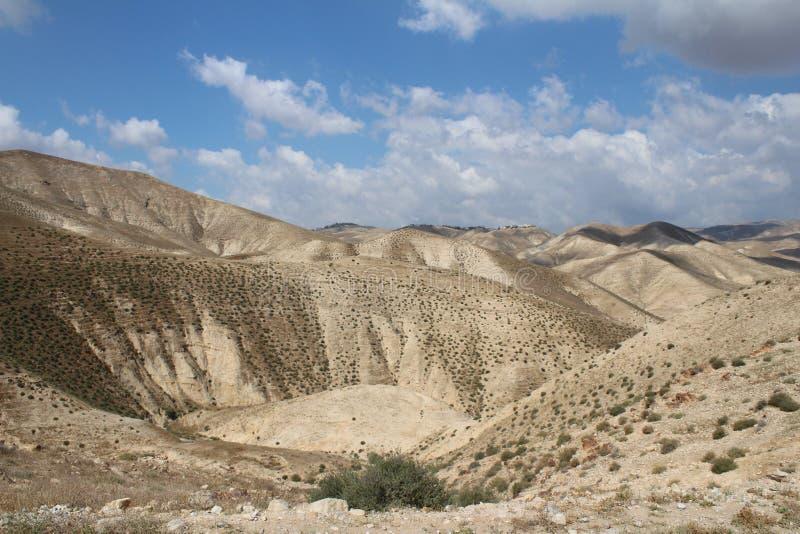 Wadi Qelt en el desierto de Judean cerca de Jericó, de la naturaleza, de la piedra, de la roca y del oasis Lugares no vistos, des foto de archivo libre de regalías