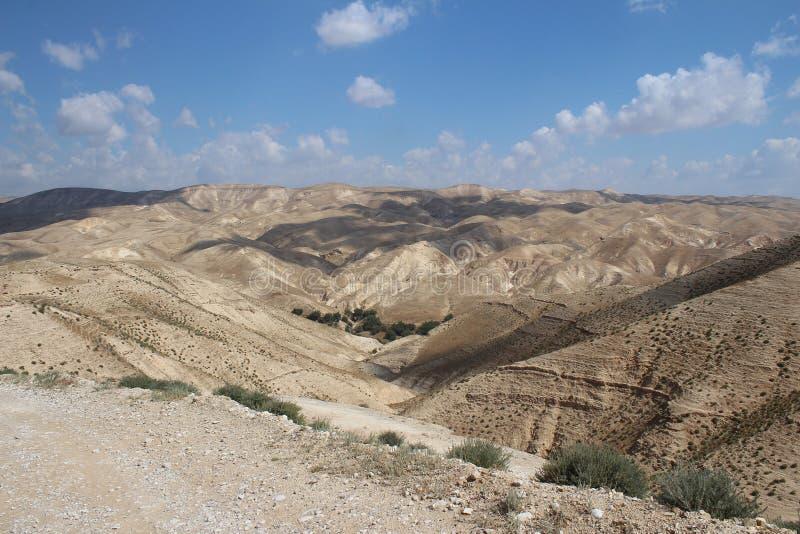 Wadi Qelt en el desierto de Judean cerca de Jericó, de la naturaleza, de la piedra, de la roca y del oasis Lugares no vistos, des imagen de archivo libre de regalías