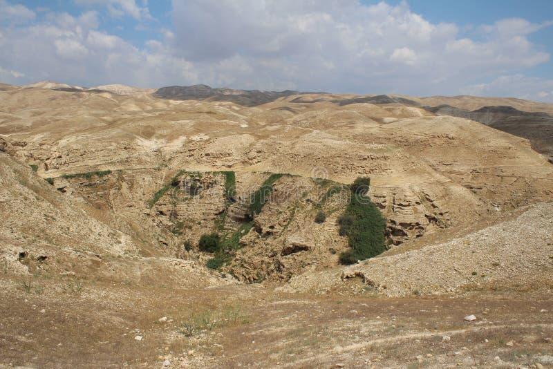 Wadi Qelt in Judean-woestijn dichtbij Jericho, aard, steen, rots en oase Unseen, onbekende, onverkende plaatsen, verborgen reis stock foto's