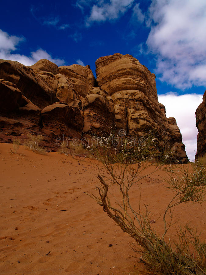 Download Wadi rum stock image. Image of middle, east, rocky, natural - 13544223