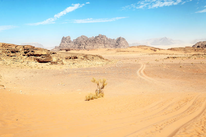 Wadi Rum desert. In Jordan on a sunny day. In the background are mountains stock photos