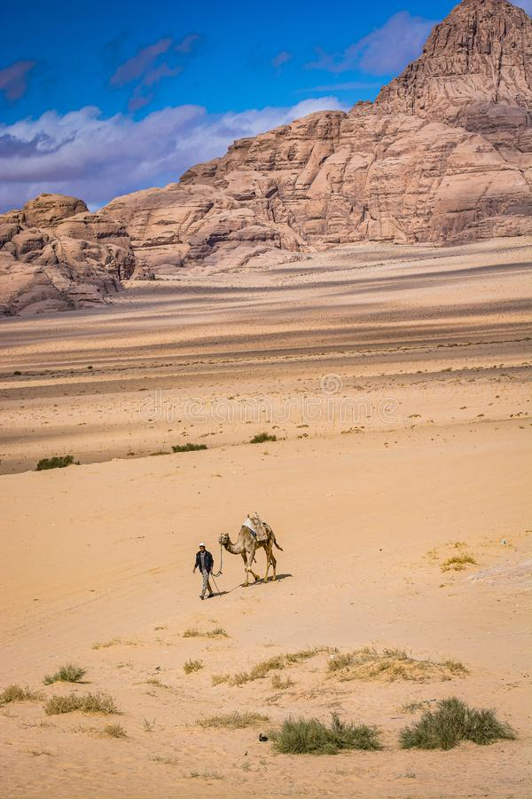 Wadi Rum, Jordan - January 26, 2016. Man with camel walking through the desert of Wadi Rum.  stock photos