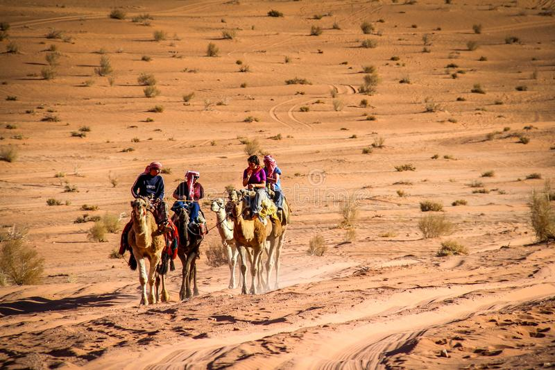 WADI RUM, JORDAN - Nov 2009: A group of tourists ride camels through the sandy desert of the UNESCO world heritage site of Wadi Ru stock photo