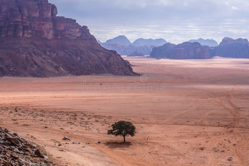 Wadi Rum valley stock photo