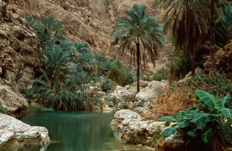 Wadi Shab royalty-vrije stock fotografie