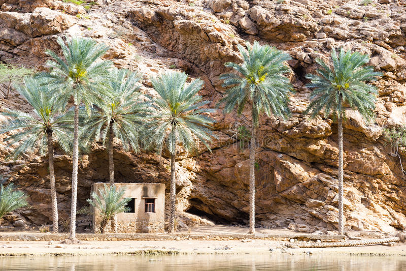 Wadi Shab Oman royalty-vrije stock foto
