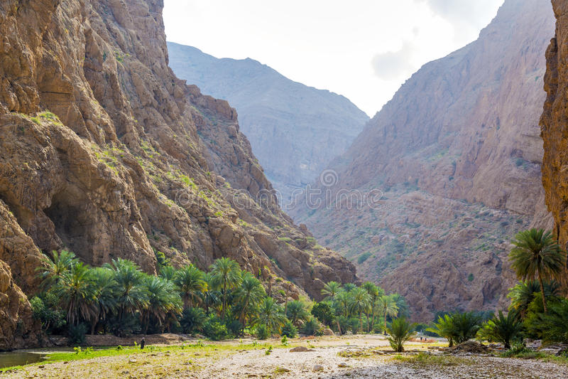 Wadi Shab Oman stock afbeelding