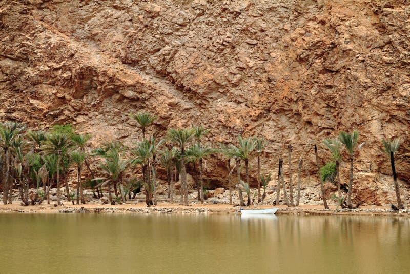 Wadi Tiwi royaltyfri foto