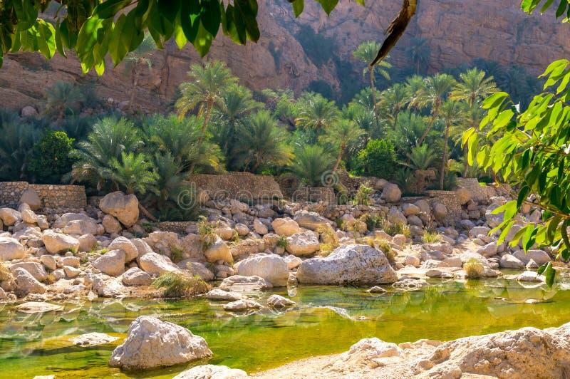 Wadi Tiwi - Oman arkivfoton