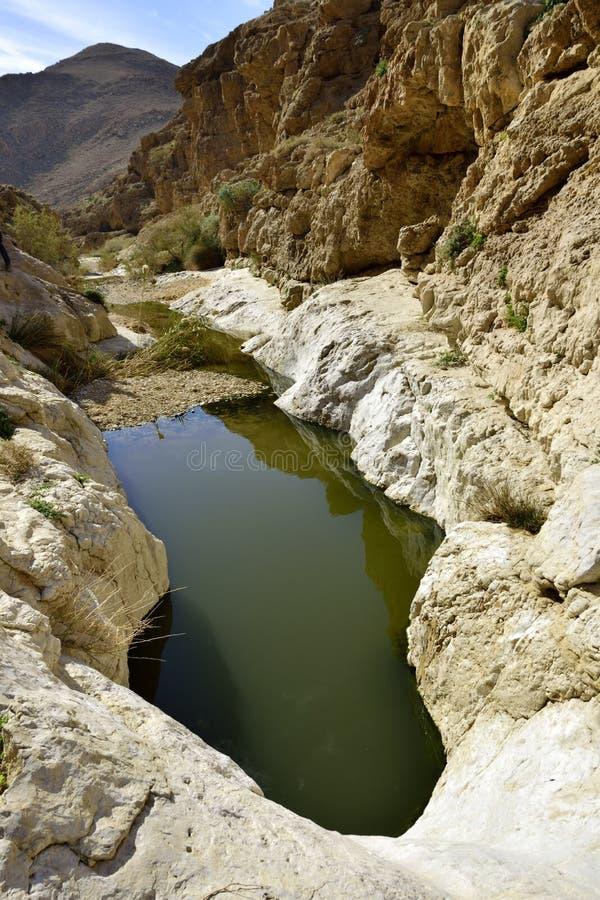 Wadi Zafit en desierto del Néguev fotos de archivo