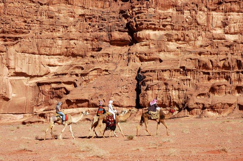 Wadiego Rumowy wielbłądzi safari, Jordania zdjęcia stock