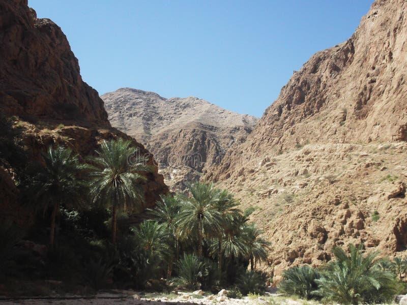 Wadiego Shab oaza, Oman obraz royalty free