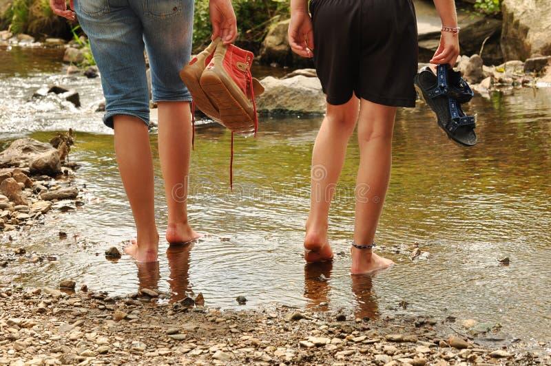 Wading stock image