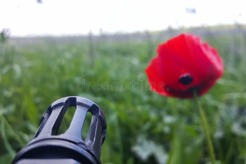 Waffe gegen bunte Blumen, wählend zwischen Frieden oder Krieg Konzept: stoppen Sie Konflikt, glauben Sie der Weltschönheit lizenzfreie stockfotos
