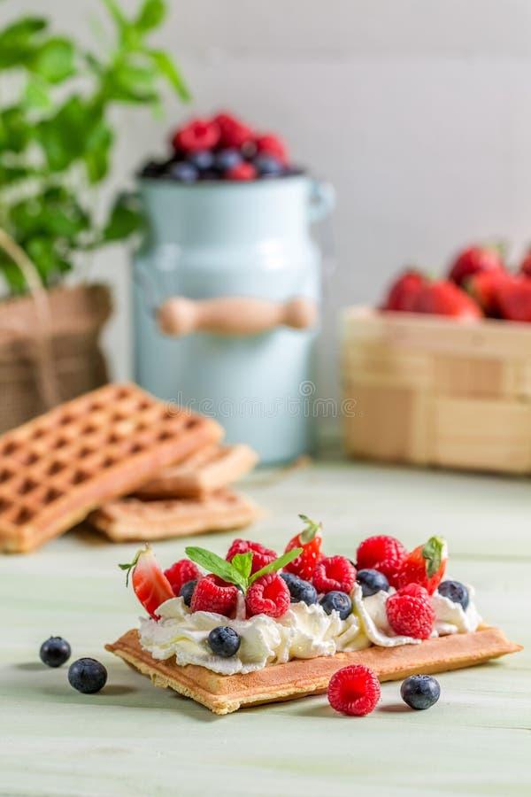 Waffle с взбитыми cream и свежими фруктами стоковая фотография rf