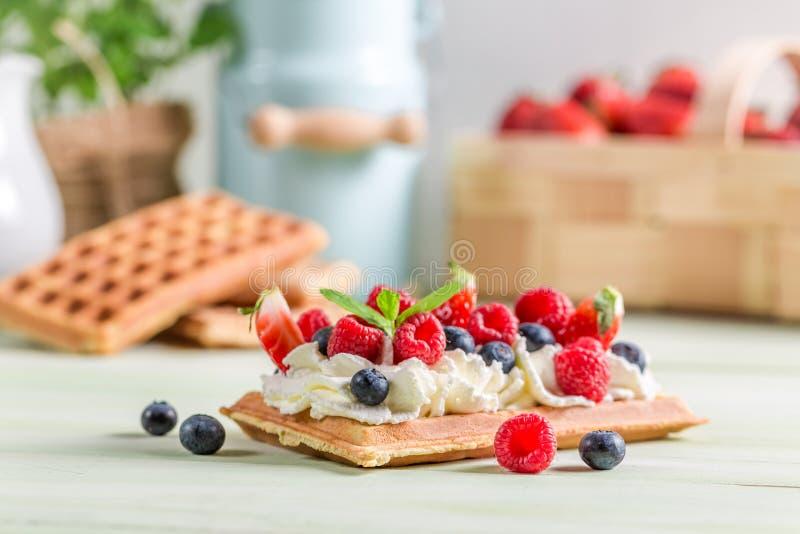 Waffle с плодоовощ ягоды и взбитой сливк стоковая фотография
