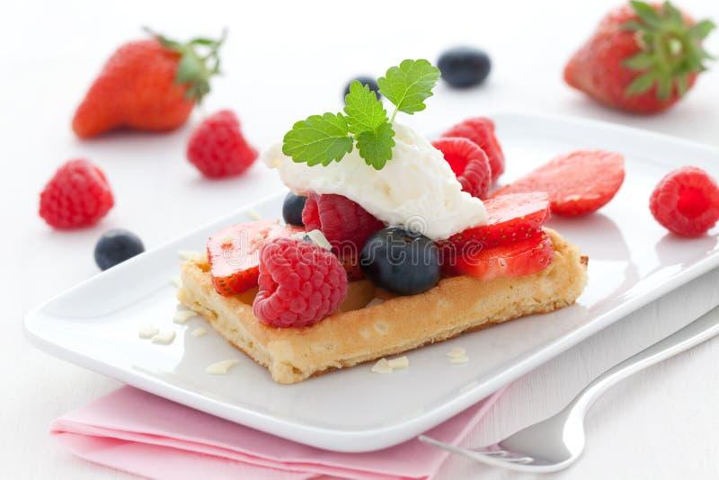 Waffle da fruta fotografia de stock