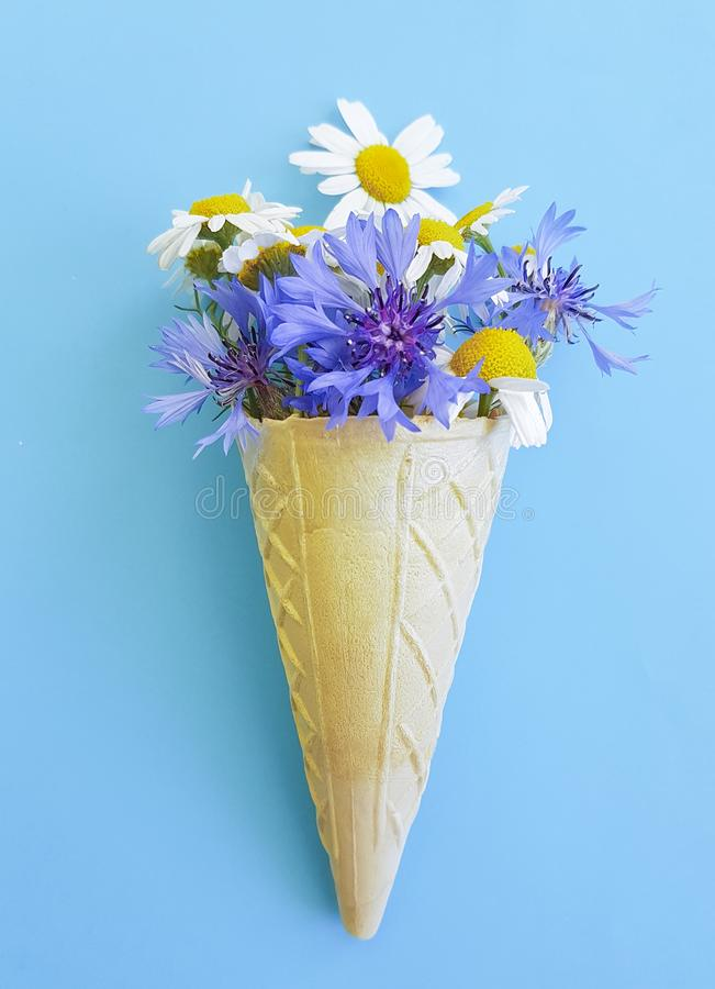 Waffle ice cream chamomile creative bright flat lay, concept and cornflower on blue background royalty free stock photography