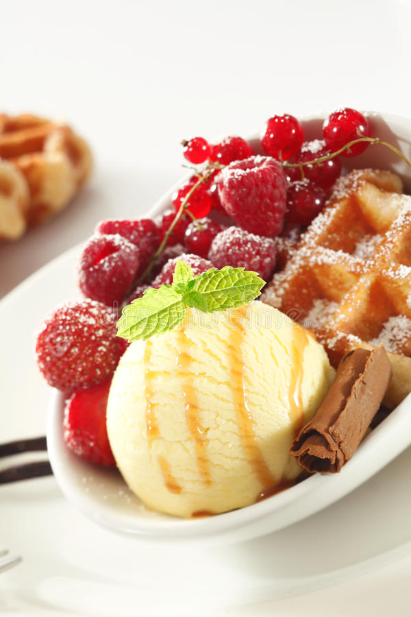 Free Waffle With Fresh Berries And Ice-cream Stock Images - 25733634