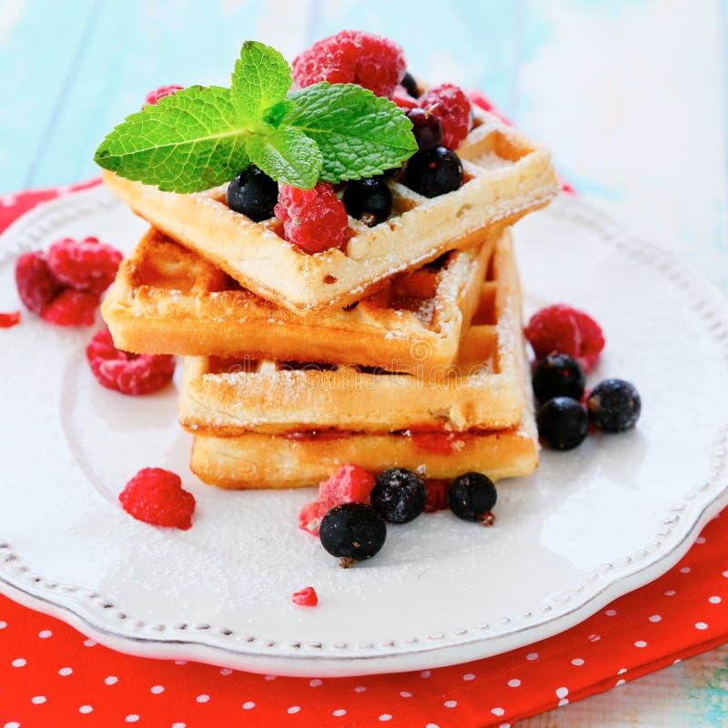 Waffles стога с зрелой ягодой лета стоковое фото