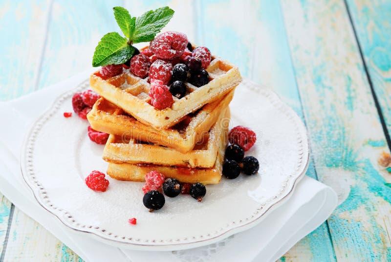 Waffles с ягодами лета стоковое фото