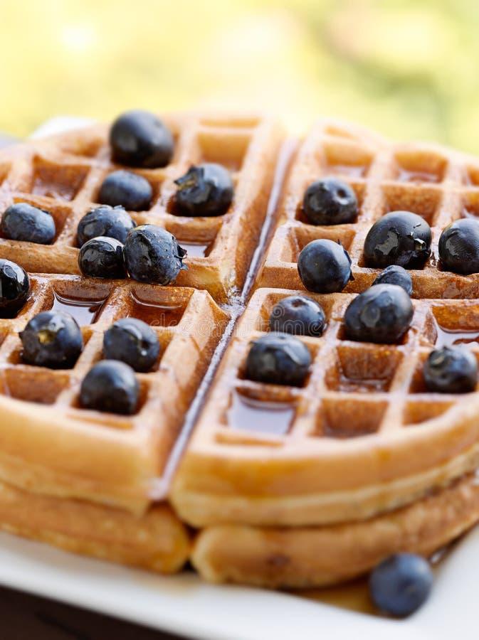 Waffles com uvas-do-monte foto de stock