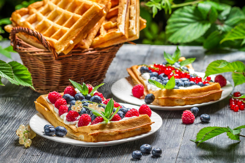 Waffles with fresh berry fruit and mint leaf royalty free stock photography