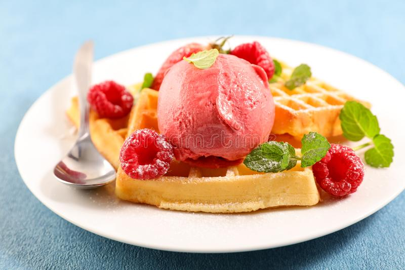 Waffles with ice cream. And berries fruits stock photography