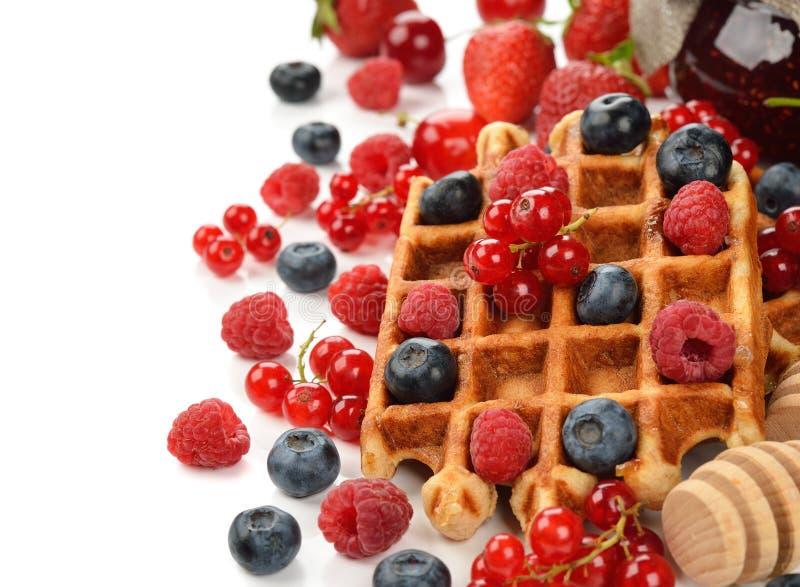 Waffles Liege с ягодами стоковое изображение rf
