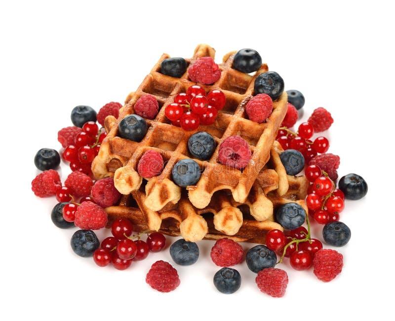 Waffles Liege с ягодами стоковая фотография